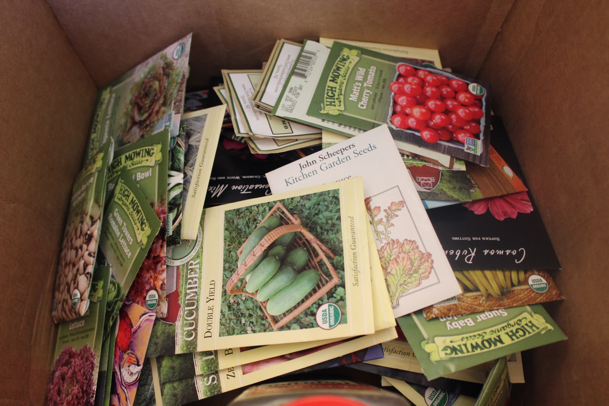 Seeds for Puerto Rico Relief