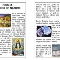 EFMI_Orishas_Infosheet_2011.pdf