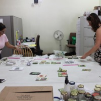 Sorting Seeds at the Seed Brigade