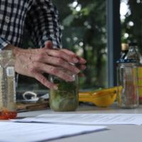 Herbs and Herbalist's Hands
