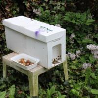 Apiculture Initiative: Nucleus Hive