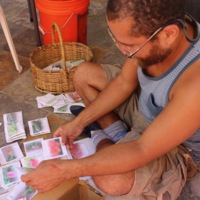 Sorting Seeds for School Semitecas