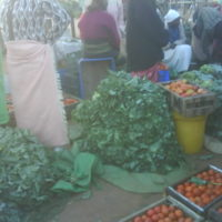 Vegetables for Sale at the Domboshava Showgrounds Market