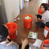 Categorizing Seeds