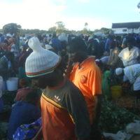 Morning Bustle - Domboshava Showgrounds Market